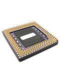 Microprocessor. Close up of isolated microprocessor with gold pins Royalty Free Stock Photography