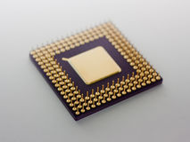 Microprocessor Royalty Free Stock Photography