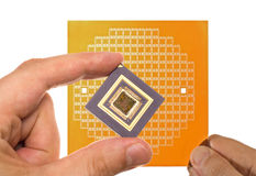 Microprocessor and chip mask in hand Royalty Free Stock Images