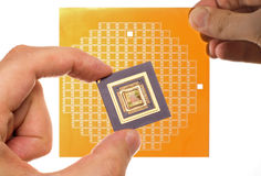 Microprocessor and chip mask in hand Royalty Free Stock Photography