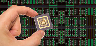 Microprocessor in hand Stock Image