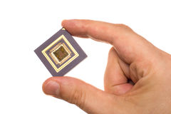 Microprocessor in hand Royalty Free Stock Photos