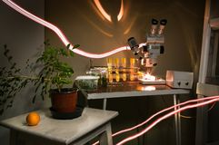 Micropropagation of plants in vitro laboratory research. Indoor houseplant of orange in a pot, test tubes with. Microplants. Binocular microscope sterile stock image