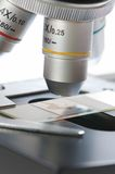 Microscópio Imagens de Stock