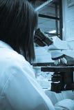 Microscópio do laboratório imagem de stock