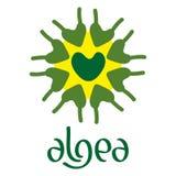 Microscobic Algea Icon and Logo Design Stock Photo