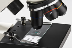 Microscope Royalty Free Stock Photos