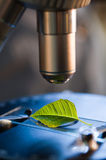 Microscope in bio laboratory Stock Image