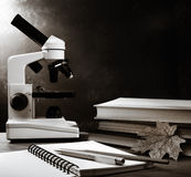 Microscope, books and maple leaf Royalty Free Stock Photography