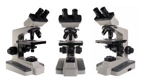 Microscope d'isolement sous le fond blanc Photos stock