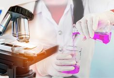 Microscope equipment for research experiments with scientist woman carrying research chemistry liquid to test tube Stock Photos