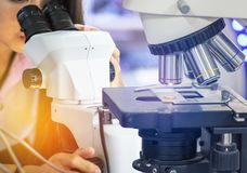 Microscope equipment for research experiments with scientist woman looking through microscope Stock Photography