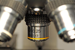Microscope macro Royalty Free Stock Photos