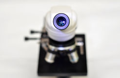 Microscope ocular Stock Images