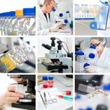 Microscopi nella regolazione moderna del laboratorio, collage Immagine Stock