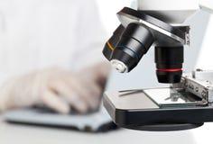 Microscopia Immagini Stock Libere da Diritti