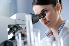Microscopic analysis of samples Royalty Free Stock Images