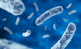 Microscopic bacteria. In blue background, 3d illustration royalty free stock photography