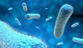Microscopic blue bacteria. Microscopic bacteria in blue background, 3d illustration Stock Photo
