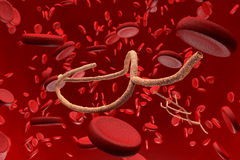 Microscopic Ebola Virus and Blood Cells Stock Images