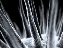 Microscopic Virus. Tiny Microscopic Virus Rendering on black Royalty Free Stock Photos
