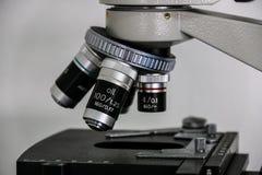 microscopico Immagine Stock Libera da Diritti