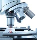 Microscopio Immagine Stock Libera da Diritti