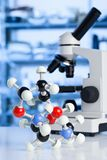 Microscopio con el modelo de la molécula en laboratorio Imágenes de archivo libres de regalías