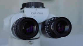 Microscopio dei mel 90 archivi video
