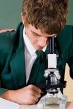Microscopio di uso dell'allievo Fotografie Stock Libere da Diritti