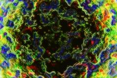 Microscopisch Royalty-vrije Stock Afbeeldingen