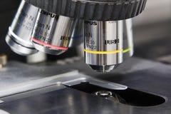 Microsope Imagem de Stock Royalty Free