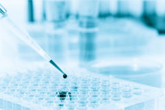 Microtubes and micropipet lab test Royalty Free Stock Photo