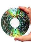microwaved cd holding royaltyfri foto