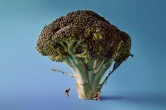 Microworld in den Frauen stellt unter dem Baumbrokkoli auf blauem Hintergrund dar Karikaturart, Lebensmittelphotographie Lizenzfreies Stockfoto