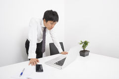 Mid adult businessman looking at laptop in office Stock Images