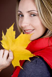 A mid adult woman holding an autumn leaf, smiling stock image
