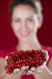 A mid adult woman holding a handful of redcurrants Stock Image