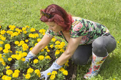 Mid age happy woman doing some gardening Stock Photo