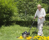 Mid age man is mowing the grass Stock Images