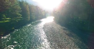 Mid air flight over fresh and clean mountain river at sunny summer morning stock video footage
