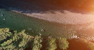 Mid air flight over fresh and clean mountain river at sunny summer morning. Vertical movement stock video