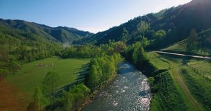 Mid air flight over fresh mountain river and meadow at sunny summer morning. Rural dirt road below. Aerial UHD 4K view. Mid-air flight over fresh mountain river stock video footage