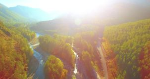 Mid air flight over fresh mountain river and meadow at sunny summer morning. Rural dirt road below. Aerial UHD 4K view. Mid-air flight over fresh mountain river stock video