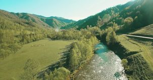 Mid-air flight over fresh mountain river and meadow at sunny summer morning. Rural dirt road below. stock video