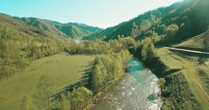 Mid-air flight over fresh mountain river and meadow at sunny summer morning. Rural dirt road below. stock video footage