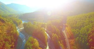 Mid air flight over fresh mountain river and meadow at sunny summer morning. Rural dirt road below. stock footage