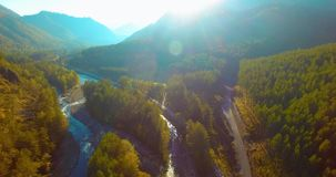 Mid air flight over fresh mountain river and meadow at sunny summer morning. Rural dirt road below. Aerial UHD 4K view. Mid-air flight over fresh mountain river stock footage