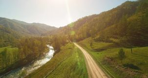 Mid air flight over fresh mountain river and meadow at sunny summer morning. Rural dirt road below. Cows and car. Aerial UHD 4K view. Mid-air flight over fresh stock video