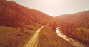 Mid air flight over fresh mountain river and meadow at sunny summer morning. Rural dirt road below. Cows and car. Aerial UHD 4K view. Mid-air flight over fresh stock footage